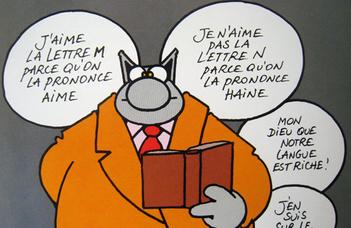 Francia minor • szintfelmérés
