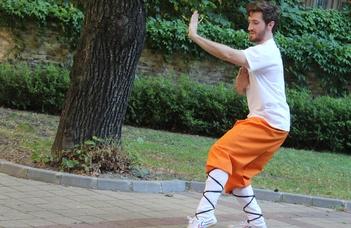 Kövér Kristóf taiji és kungfu oktató előadása.