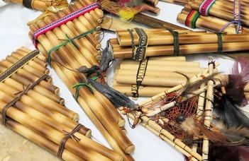 Az európai szalonzenétől a tradicionális ecuadori zenéig